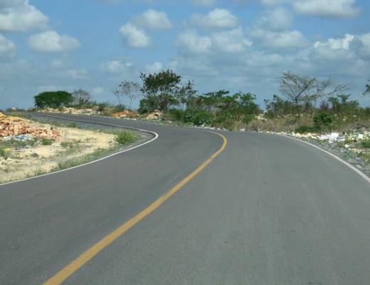 avenida ecologica